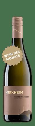 2019 Weissburgunder trocken *Wein des Monats*