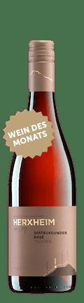 2019 Spätburgunder rosé trocken *Wein des Monats*