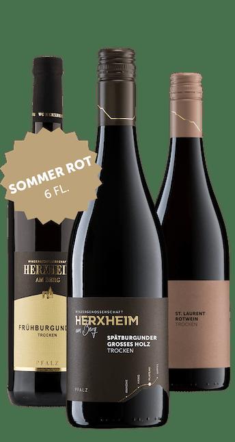 Angebot: 6 Flaschen Sommer Rot
