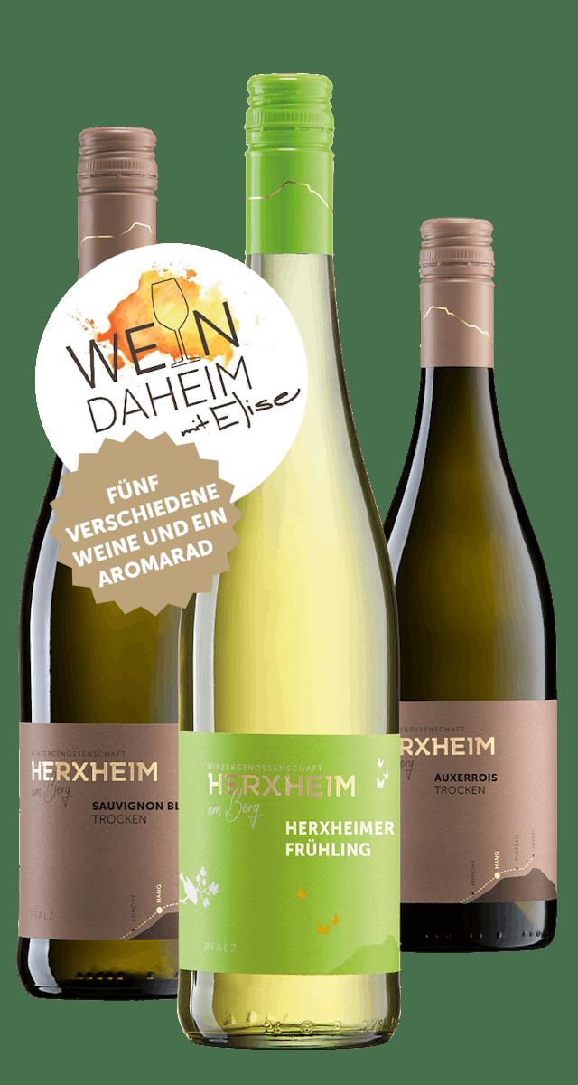"""Online Weinprobe am 19.3.2021 """"Wein Daheim mit Elise"""""""